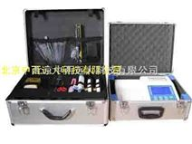 食品二氧化硫检测仪(10通道) 型号:5HHXSJ10EYHL库号:M389990