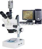 电脑型立体显微镜