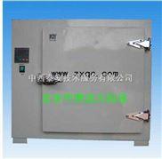 ZM16/KX-202-电热恒温干燥箱