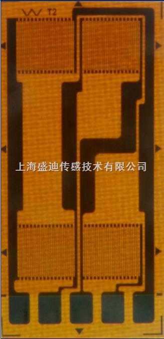 bf-fg 高精度电阻式应变片全桥片bf-fg系列