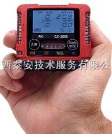 便携式多气体检测仪 英国