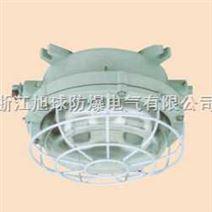 BAY-H防爆环形荧光灯|防爆环形节能荧光灯配件