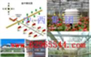 叶面湿度传感器 型号:WPH1-M211066(中西)