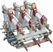 FZN21-12D/T630-20型户内高压真空负荷开关品质保证