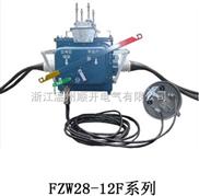 FZW28(VSP5)-12F型户外柱上分界真空负荷开关专业生产