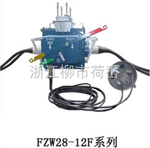 FZW28(VSP5)-12户外柱上分界真空负荷开关