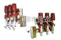 FKN12-12D型户内高压负荷开关