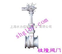 电动排渣闸阀-上海桂隆