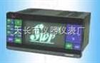 SWP-VFD荧光显示记录仪