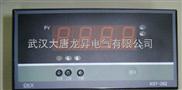 XST-262温控仪