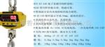 OCS80公斤直视吊钩秤,100公斤电子吊钩秤,200公斤直视吊秤,300公斤电子吊钩秤