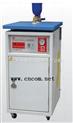 M9W-315629-电加热蒸汽发生器