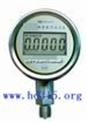 CHW10-CWY100-数字精密压力表