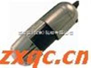 数码显微镜(手持式.) 型号:DGX1-AM413T5