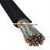 DJF46PVP氟塑料耐高温防腐计算机电缆(图)