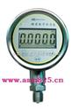 数字精密压力表/真空表 型号:MCWY100库号:M337312