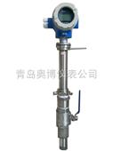 测水用的插入式流量计