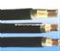ZR-KVV22阻燃控制电缆(图)