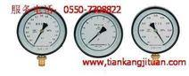 YB-150A/150B系列精密压力表