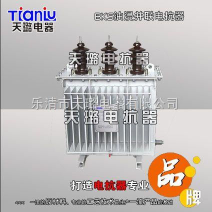 BKS-60/10油浸�F芯并��抗器