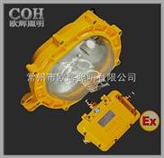 BFC8120 内场防爆泛光灯,防爆灯,防爆防尘灯,防爆泛光灯,LED防尘灯,LED防爆灯。防震投光
