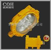 BFE8120 内场防爆应急灯,防爆灯,防爆防尘灯,防爆泛光灯,LED防尘灯,LED防爆灯。防震投光