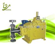 J-DR系列-柱塞式计量泵