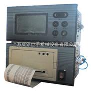 带现场数据曲线打印电压记录仪(SY500-305型)
