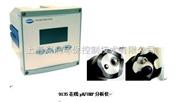 Polymetron 9135在线pH/ORP分析仪