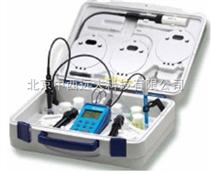 电化学分析仪器(JULABO)德国 型号:YLB-pH12库号:M378574