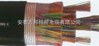 HSYA市内通信电缆
