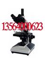 上海谦科三目生物显微镜40X-1600X