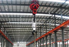 OCS上海行车吊秤,上海下视吊秤厂家,上海无线吊秤价格