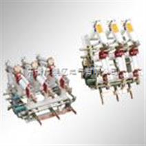 FZN21-12D/T630-20、FZRN21高压真空负荷开关及组合