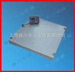 DCS-XC-B1吨标准式地磅(5吨双层地磅)