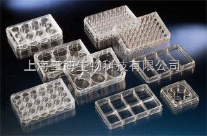 丹麦nunc 6孔细胞培养板