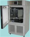 药品稳定试验箱综合药品稳定性试验箱