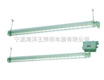 隔爆型防爆节能荧光灯(ⅡB)