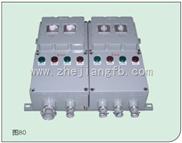 BQD55防爆配电箱,BQD55-KB0防爆控制与保护开关箱