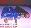 MKVV 是优质的矿用控制电缆供应商,矿用阻燃通信电缆MHYBV