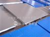 SCS电子防水秤 不锈钢电子防水秤