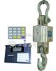 标准1T-电子吊秤,1T-电子悬挂秤,1T-无线电子悬挂秤