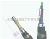 PTYVH铁路电缆 21*1.0 24*1.0 28*1.0 机床工具/风动/电动