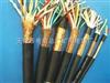 铜带屏蔽计算机控制电缆-DJYVP2 计算机控制电缆 计算机控制电缆 JKVVPR1