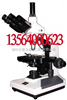 上海谦科双目生物显微镜40X-1000X
