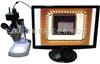CCD光学显微镜,生物光学显微镜E320