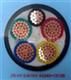 耐火阻燃VV电力电缆 中国驰名商标产品 安徽省百强企业